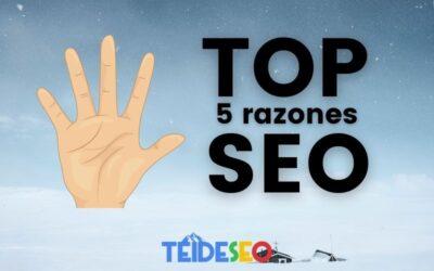 Top 5 razones por las que tu página web necesita SEO