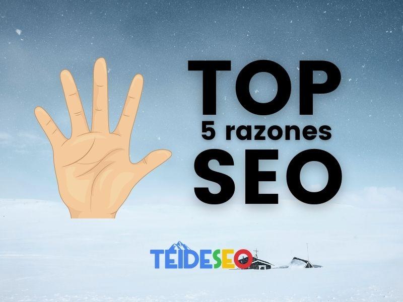 top 5 razones necesitas seo