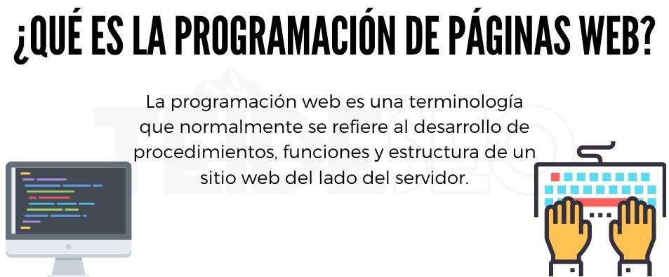 programación web en tenerife